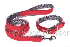 red velvet matching dog collar and lead set by BlossomCo