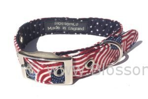 A BlossomCo dog collar in the American Stars and Stripes Flag design