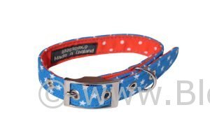 Apollo Stars Dog Collar