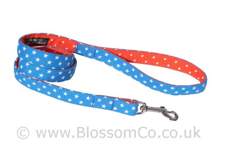 Dog lead with stars design by BlossomCo
