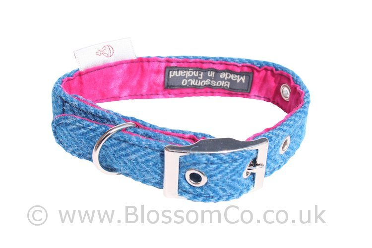 Berneray Blue Harris Tweed Dog Collar by BlossomCo