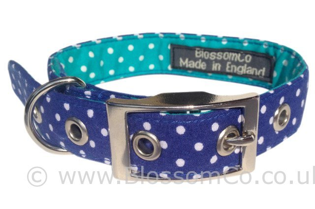 Bertie blue polkadot dog collar