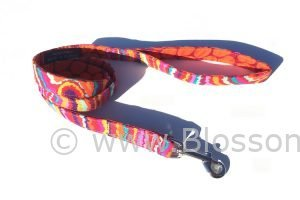 funky orange and colourful design dog lead