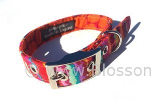 Funky colourful dog lead