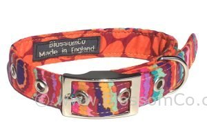 funky dog collar in bright jazzy colours handmade in great britain