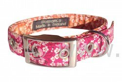 the Clara bright floral dog collar