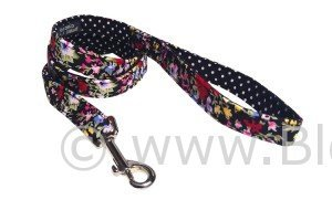 The Delphi floral dog lead by BlossomCo