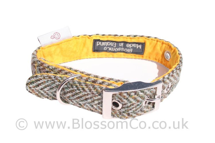 Eriskay Harris Tweed Dog Collar by BlossomCo