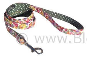 Eva - Floral and Polka Dot Dog Lead