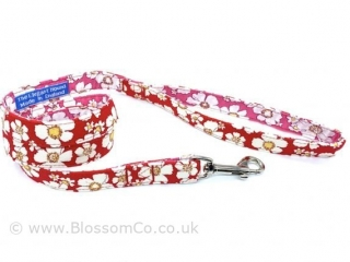 red and pink floral pattern fabric dog lead made in the UK