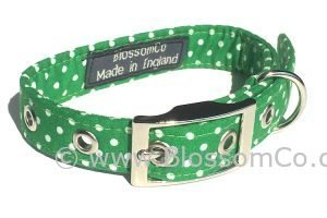green dog collar with white polka dot design