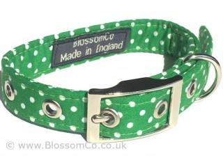 green dog collar with white polka dot design