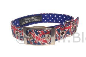 blossomco dog collar in unusual union jack design