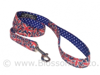Jack is the Great British Union Jack Dog Lead by BlossomCo