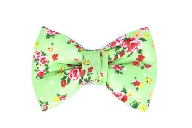 handmade bowtie for dogs in green floral fabric