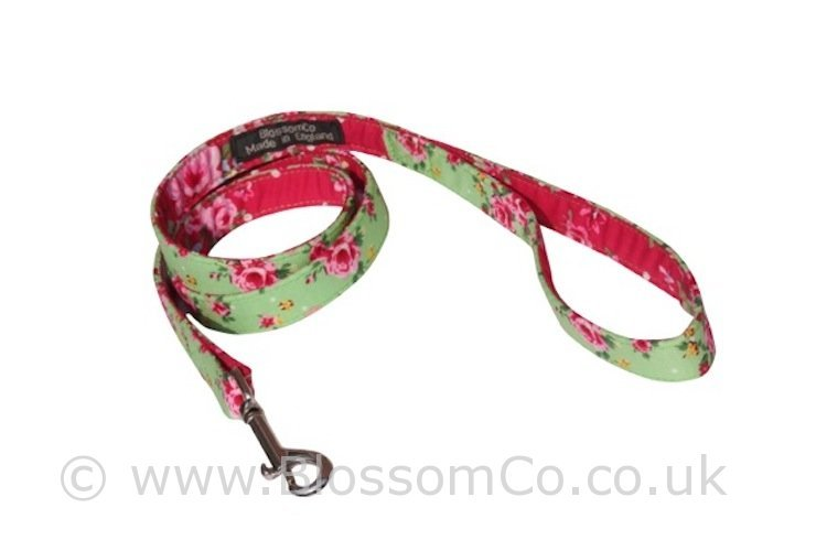 Henley pretty green and red floral pattern dog lead