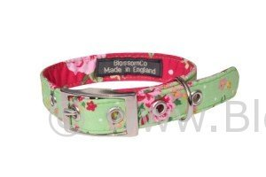 vibrant green handmade dog collar with gorgeous floral design