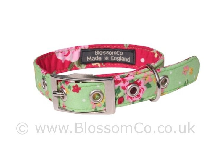 Blossomco Dog Collars