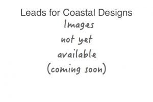 coastal theme pattern dog leads