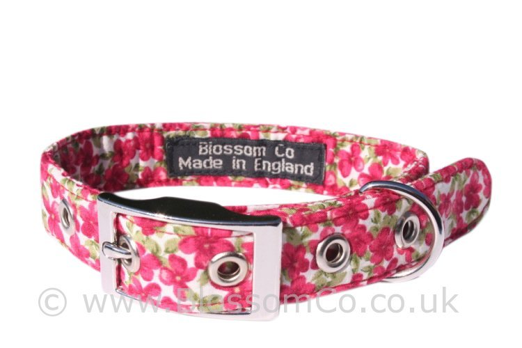 Wholesale Dog Collars Uk