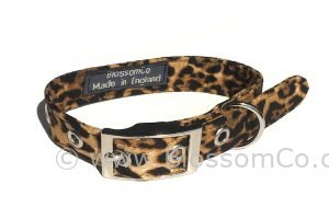dog collar in leopardskin print design