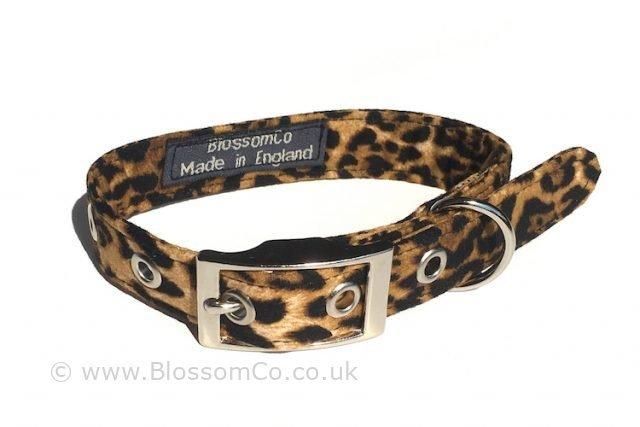 dog collar in leopardskin print design