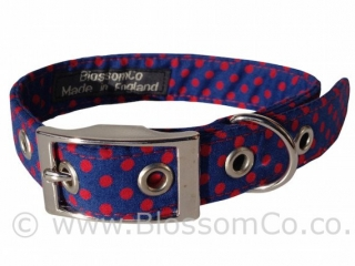 deep blue dog collar with red polka dots