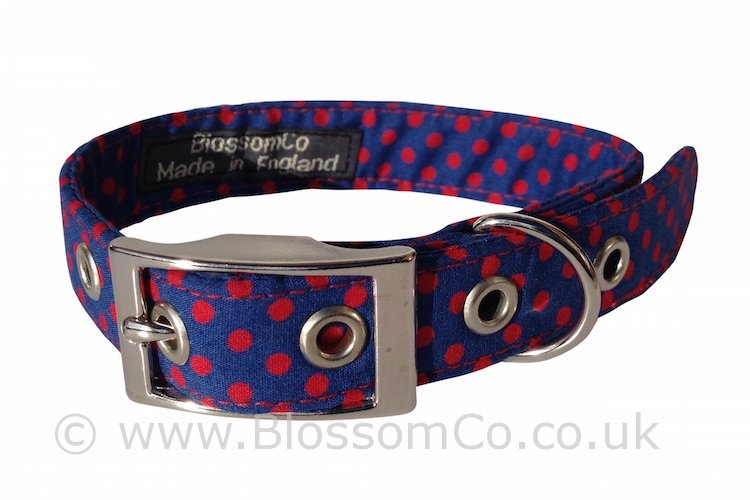 Max - Super Stylish Polka Dot Dog Collar by BlossomCo
