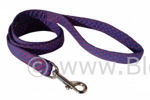 Max - Blue and Red polka dot dog lead