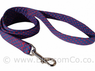 Max is a blue and red polka dot dog lead