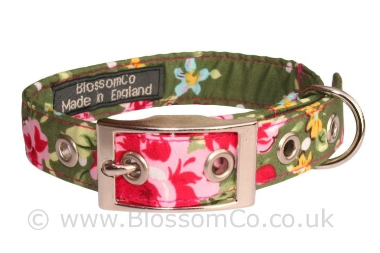 This beautiful olive green dog collar by BlossomCo is called Olive in their range.