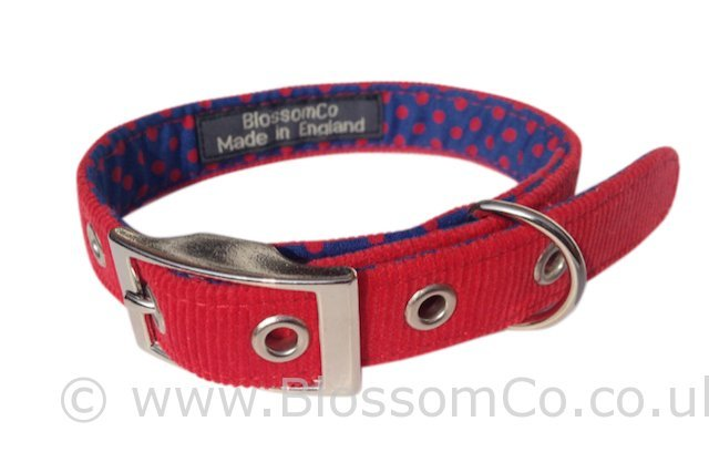 Otto Red Corduroy Dog Collar