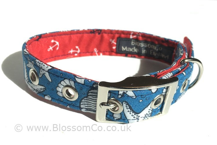dog collars with sea shells pattern