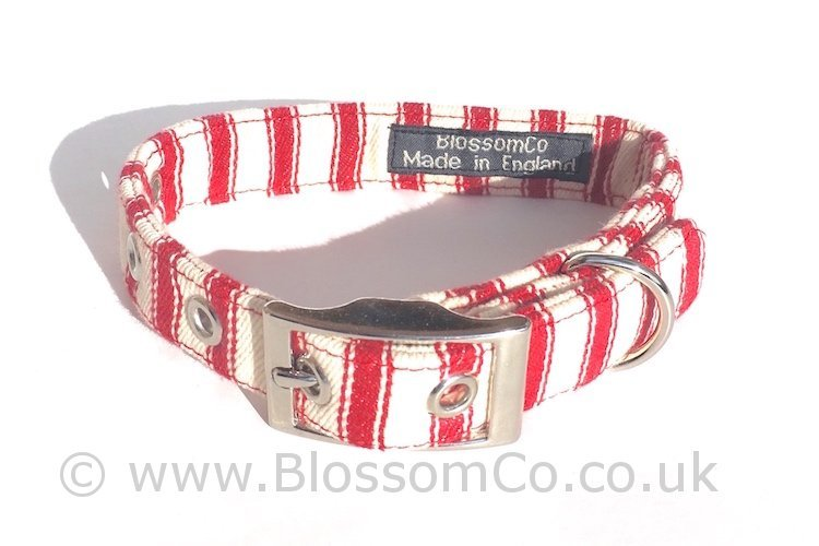 Seymour - Red and White Stripes Dog Collar