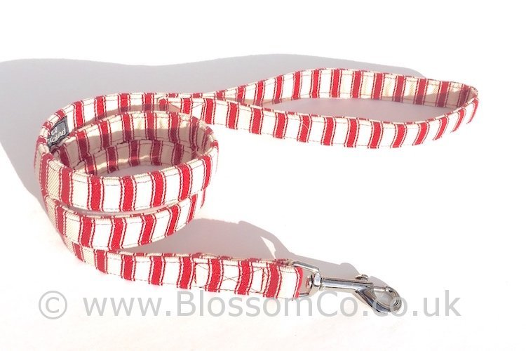 Seymour - Red and White Stripes Dog Lead