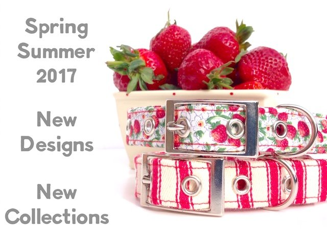 Summer Style Dog Collars and Leads