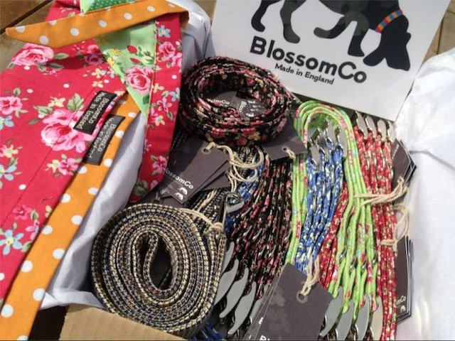 Wholesale Dog Collars and Accessories Ready for Shipping
