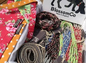 BlossomCo Wholesale Dog Collars, Lead and Accessories
