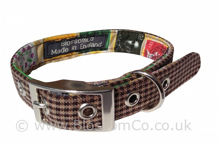 Wilbur is a Trendy Check Dog Collar with a stamp design lining.
