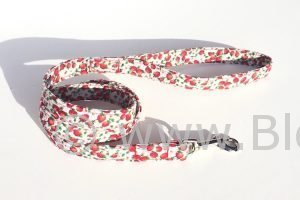 Wimbledon - Strawberries Dog Lead